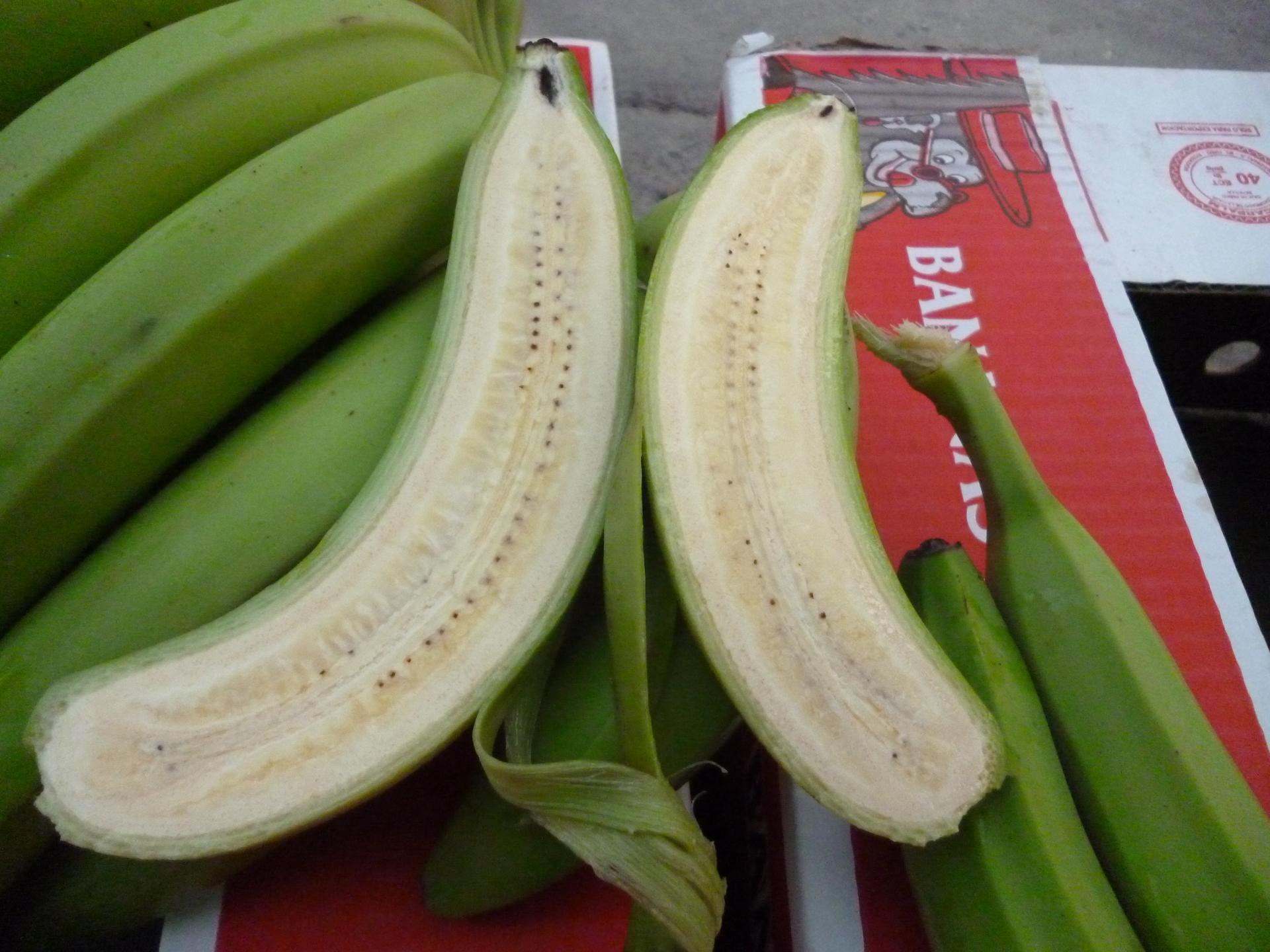 Fruit Inspection 7